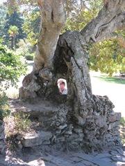 Ben-in-tree